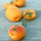 Stone Fruit Bonanza ~ 盛夏の核果響宴
