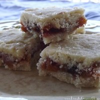 Shortbread and Dried Fruit Bars!!!