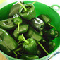 Weekend Herb Blogging #332 hosted here this week and some addictive hot pepper condiment
