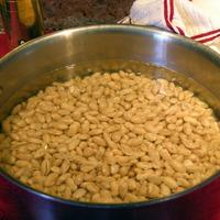 Mayo Cabo Beans (Canario-Peruanos)