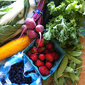 Adventures in CSA (2012): Week 2 Wrap-Up
