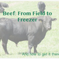 Beef: From Field to Freezer, a How-to-Buy-a-Cow Guide