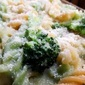 White pasta in creamy broccoli!
