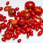 """""""Sun Dried"""" Tomatoes. Fun With The Dehydrator"""