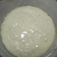 Sourdough Starter for Beginners