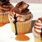 Snicker Doodle Cupcake Recipe