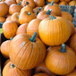 Don't forget about pumpkin - it can be a healthy year round staple