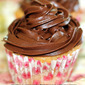 Vanilla Cup Cake with Chocolate Frosting