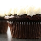 buttermilk chocolate cupcakes with vanilla bean buttercream