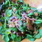 Jerusalem: Baby Spinach Salad w/ Dates & Almonds