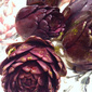 Purple Baby Artichokes in White Wine and Garlic