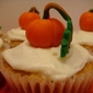 MSC: Pumpkin Patch Cupcakes