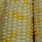 Eatwell Recipe 30: Sweet Corn and Zucchini Gratin With Fresh Basil