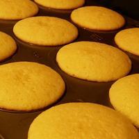 Moist Simple Cupcake