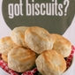 Southern Buttermilk Biscuits- A Primer