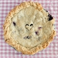 Blueberry Peach Pie or Why I love My Freezer