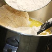 Ciabatta Rustic Hard Crusted Italian Bread