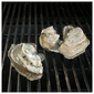 Grilled Oysters with Jalapeno Butter