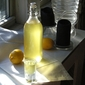 03.16.10: digestivo (is it limoncello?)