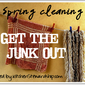 Spring Cleaning Carnival: Get the Gluten Out
