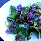 Spinach and Blood Orange Salad with Violets