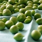 Bring The Green of Spring to the Table: Three Pea Sauté with Green Garlic and Mint