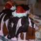 "RECIPE: ""Almost Homemade"" Strawberry Almond Bundt with Chocolate Drizzle"