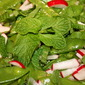 Snow Pea, Mint, & Radish Salad