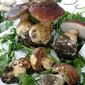 Risotto Funghi Porcini
