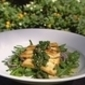 Zingy Haloumi Salad