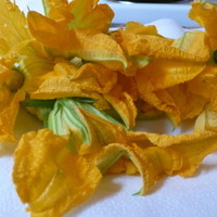 Squash Blossoms, The Edible Flowers And How To Fix Them