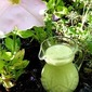 Recipe of the Week: Green Onion Dressing