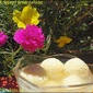 Rasgulla – A cottage Cheese Delicacy