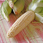 Market Matters- Sweet on Corn: Grilled with Feta & Lime