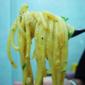 Spaghetti with Halloween Sauce