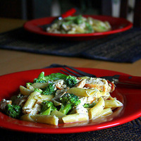 Chicken Broccoli Penne Alfredo