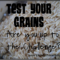 Test Your Grains: More Survey Results