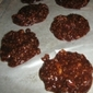 No-Bake 15 minute Vegan Refrigerator Cookies