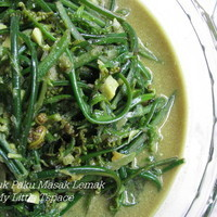 Wild Fern Shoots In Spicy Coconut Gravy