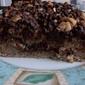 #69) Banana Coffee Cake