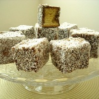 Lovely Lamingtons