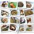 Katalog - Kuliner