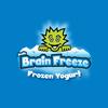 Arctic brain freeze.logo.ver.1a