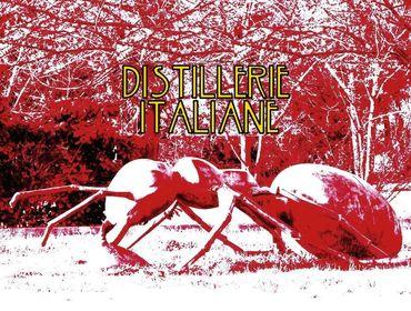 Recensione dell/'Album Distillerie Italiane