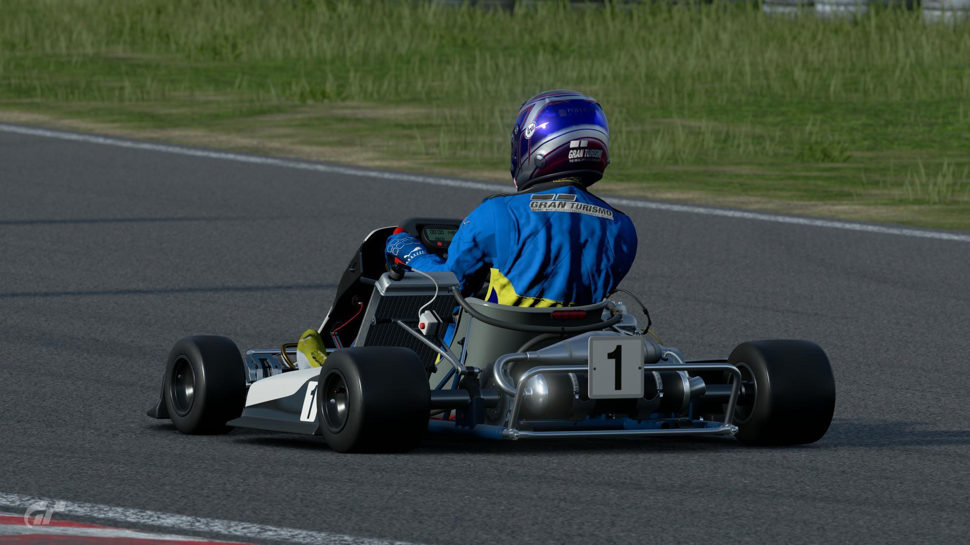 Race 1 lmp by frelo