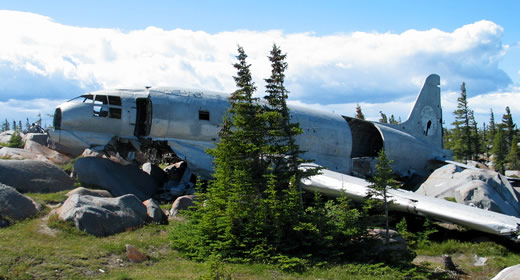 "Tour the wreckage of the famous plane, ""Miss Piggy"" - one of the many enriching historical experiences you'll enjoy on this tour of Churchill, Manitoba."