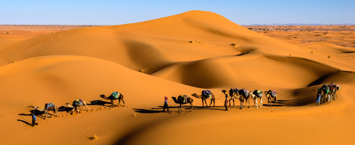 Morocco Travel