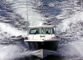 375 Pursuit Offshore- Only Bidder_2