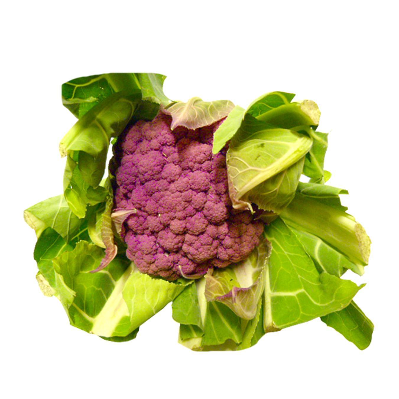 Купить Цвітна капуста фіолетова кг