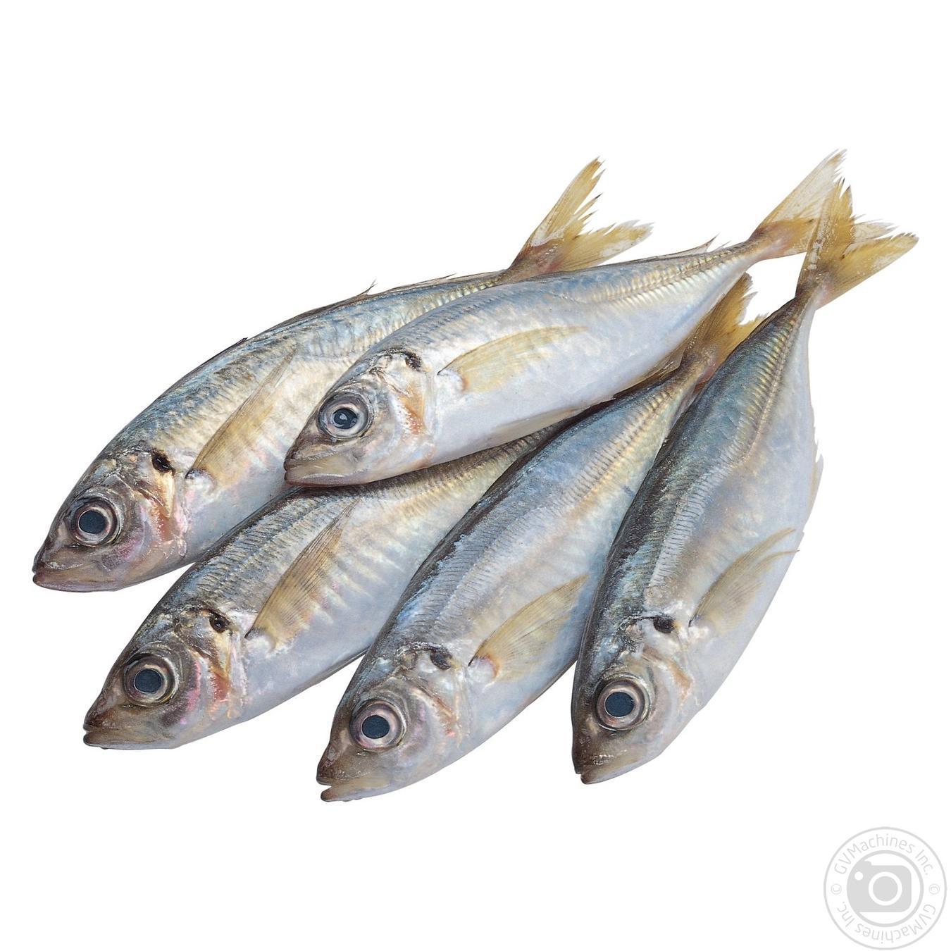 Купить Свіжа риба, СТАВРИДА ОХОЛОДЖЕНА_1